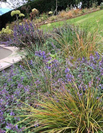 laurel-hill-garden-design-back-garden
