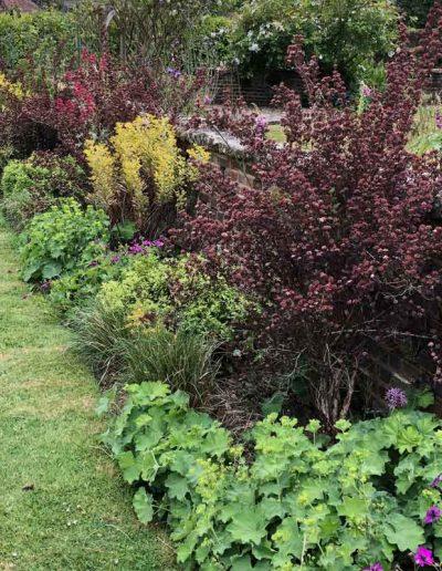 laurel-hill-garden-design-ellens-wall-border-update-2