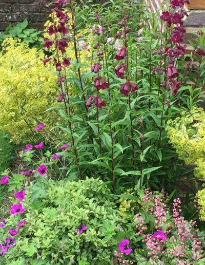 laurel-hill-garden-design-formal-sussex-a2