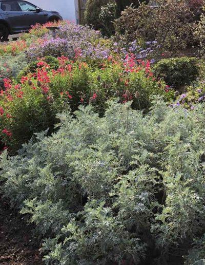 laurel-hill-garden-design-standen-homestead-1