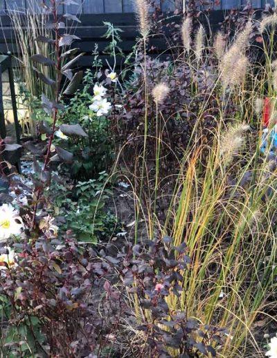laurel-hill-garden-design-urban-garden-border