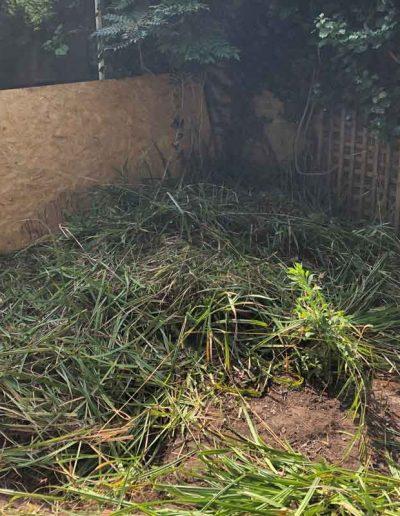 laurel-hill-garden-hill-putney-before-1