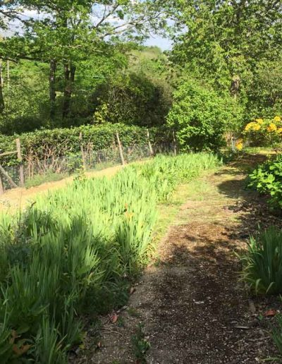 laurel-hill-garden-design-large-country-garden-before-4