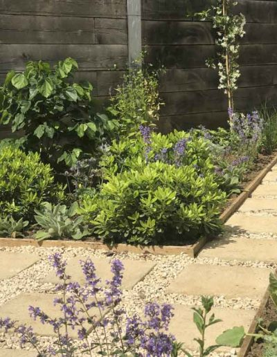 laurel-hill-garden-design-roof-garden-1