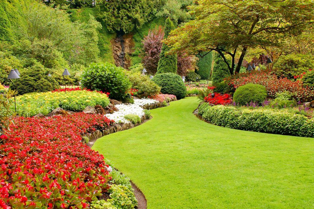 laurel-hill-garden-design-lush-garden-in-spring