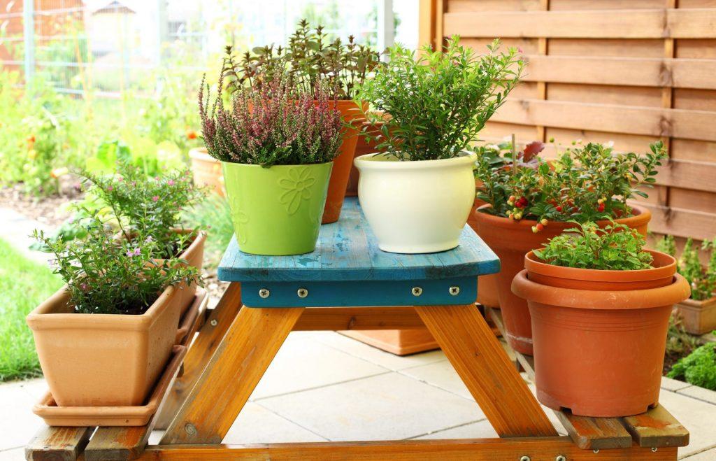 laurel-hill-gardens-outdoor-flower-pots